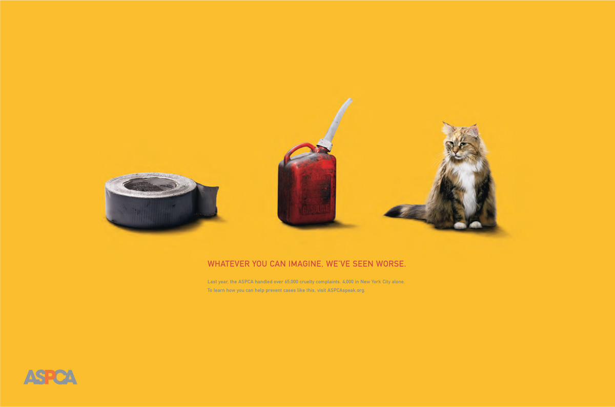 Photo: ASPCA.org advertisement