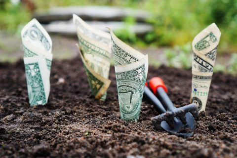 5 Ways To Grow Your Bottom Line This Year - YFS Magazine