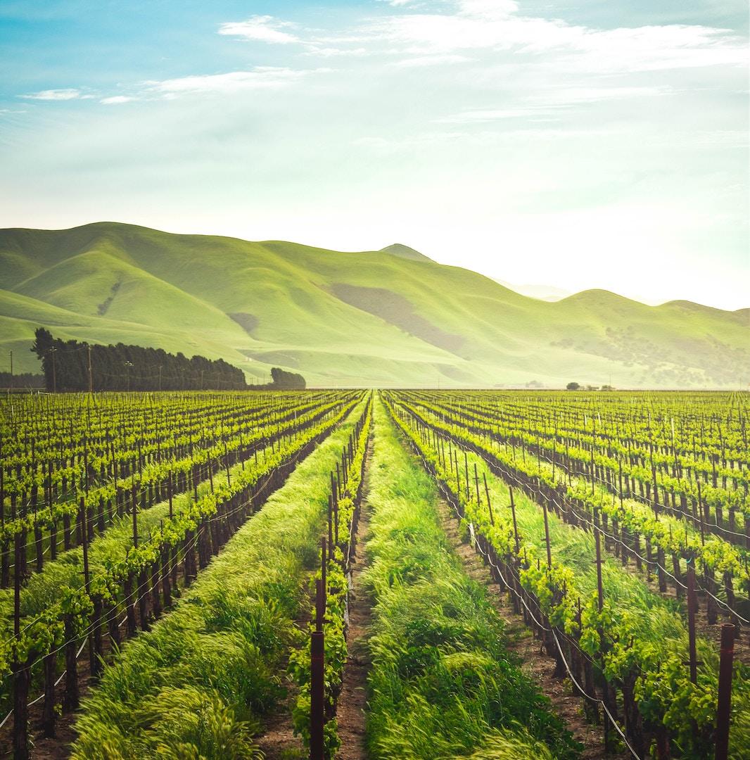 Photo: Soledad, California | Credit: Adele Payman, Unsplash
