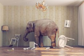 Elephant-In-Room-Confront-Difficult-Business-Scenarios-YFS-Magazine-273x182.jpeg