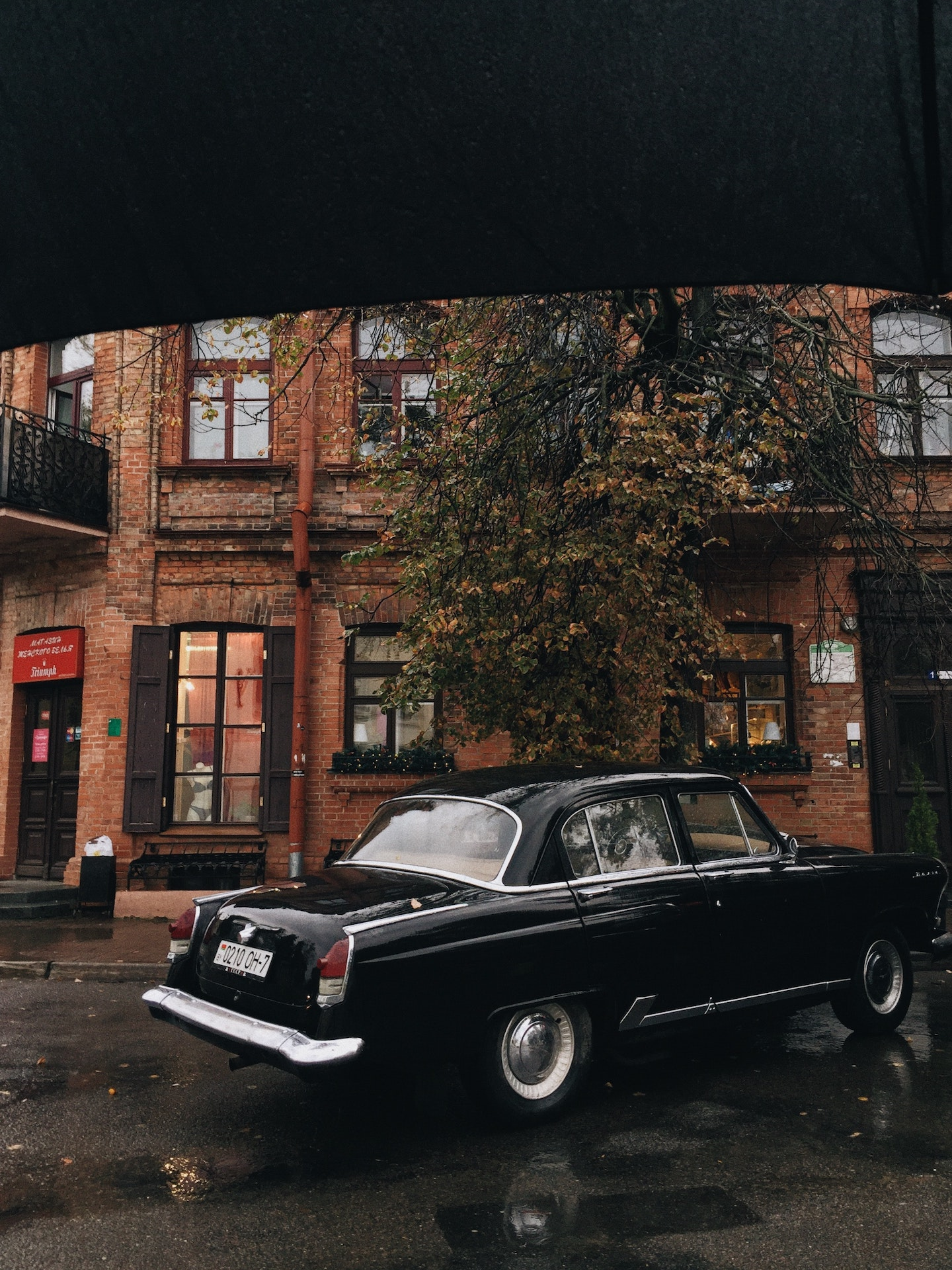 Photo: Lina Kivaka, YFS Magazine, Pexels