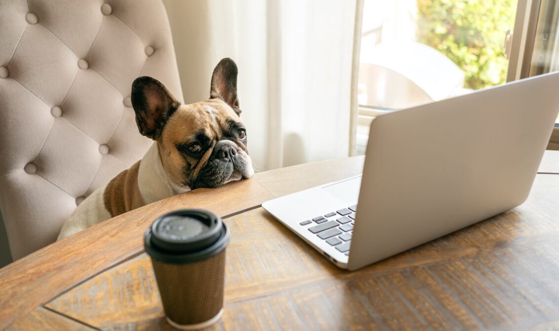 Work From Home Loneliness Is A Thing - Photo: Oksana, YFS Magazine, Adobe Stock