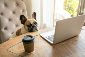 Work-From-Home-Loneliness-Is-A-Thing-Lets-Talk-About-It-YFS-Magazine-273x182.jpeg